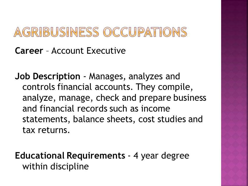 Career – Account Executive Job Description - Manages, analyzes and controls financial accounts. They compile, analyze, manage, check and prepare busin