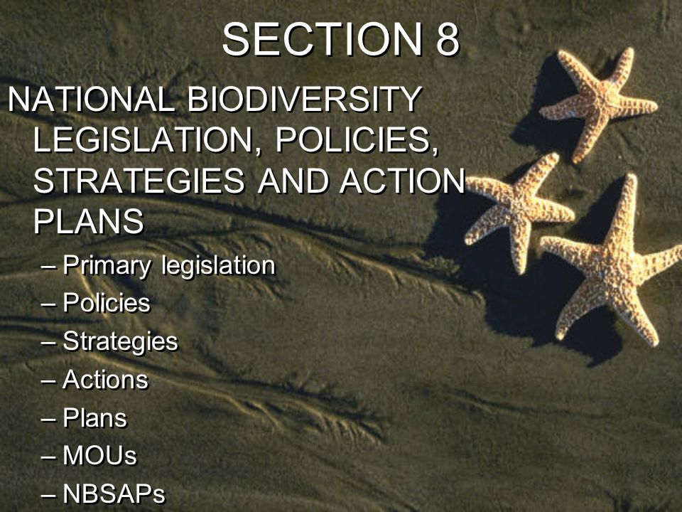 SECTION 8 NATIONAL BIODIVERSITY LEGISLATION, POLICIES, STRATEGIES AND ACTION PLANS –Primary legislation –Policies –Strategies –Actions –Plans –MOUs –NBSAPs NATIONAL BIODIVERSITY LEGISLATION, POLICIES, STRATEGIES AND ACTION PLANS –Primary legislation –Policies –Strategies –Actions –Plans –MOUs –NBSAPs