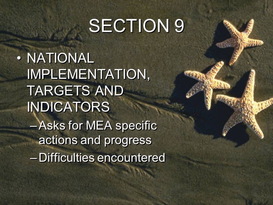 SECTION 9 NATIONAL IMPLEMENTATION, TARGETS AND INDICATORS –Asks for MEA specific actions and progress –Difficulties encountered NATIONAL IMPLEMENTATION, TARGETS AND INDICATORS –Asks for MEA specific actions and progress –Difficulties encountered