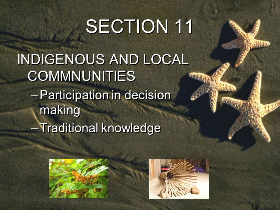 SECTION 11 INDIGENOUS AND LOCAL COMMNUNITIES –Participation in decision making –Traditional knowledge INDIGENOUS AND LOCAL COMMNUNITIES –Participation in decision making –Traditional knowledge