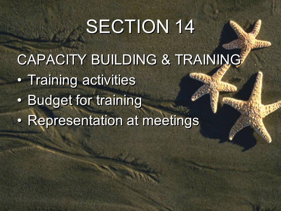 SECTION 14 CAPACITY BUILDING & TRAINING Training activities Budget for training Representation at meetings CAPACITY BUILDING & TRAINING Training activities Budget for training Representation at meetings