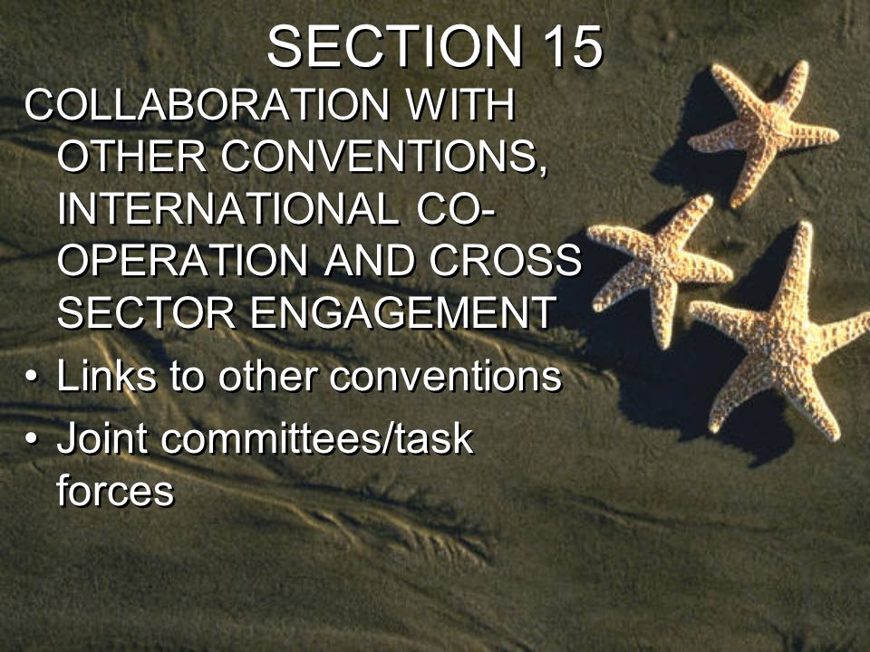 SECTION 15 COLLABORATION WITH OTHER CONVENTIONS, INTERNATIONAL CO- OPERATION AND CROSS SECTOR ENGAGEMENT Links to other conventions Joint committees/task forces COLLABORATION WITH OTHER CONVENTIONS, INTERNATIONAL CO- OPERATION AND CROSS SECTOR ENGAGEMENT Links to other conventions Joint committees/task forces