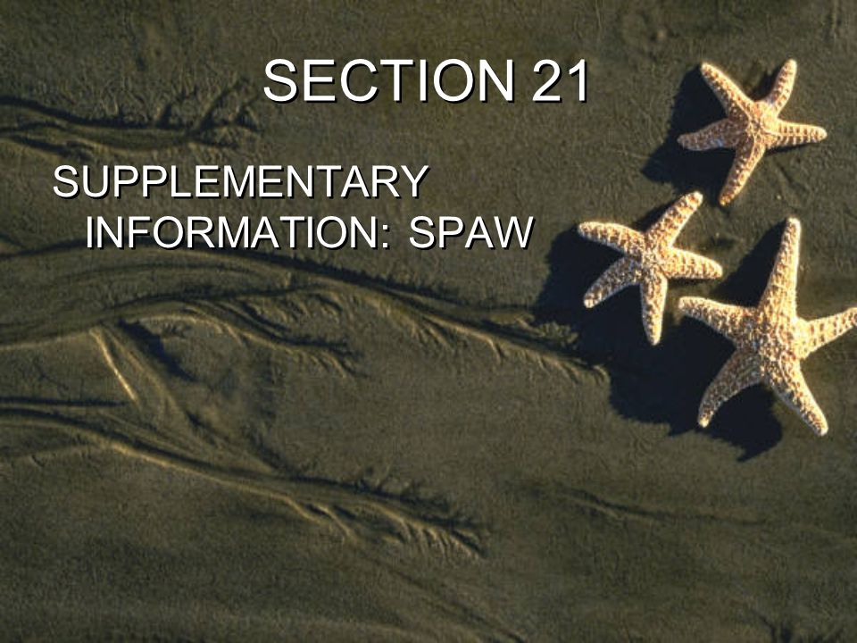SECTION 21 SUPPLEMENTARY INFORMATION: SPAW