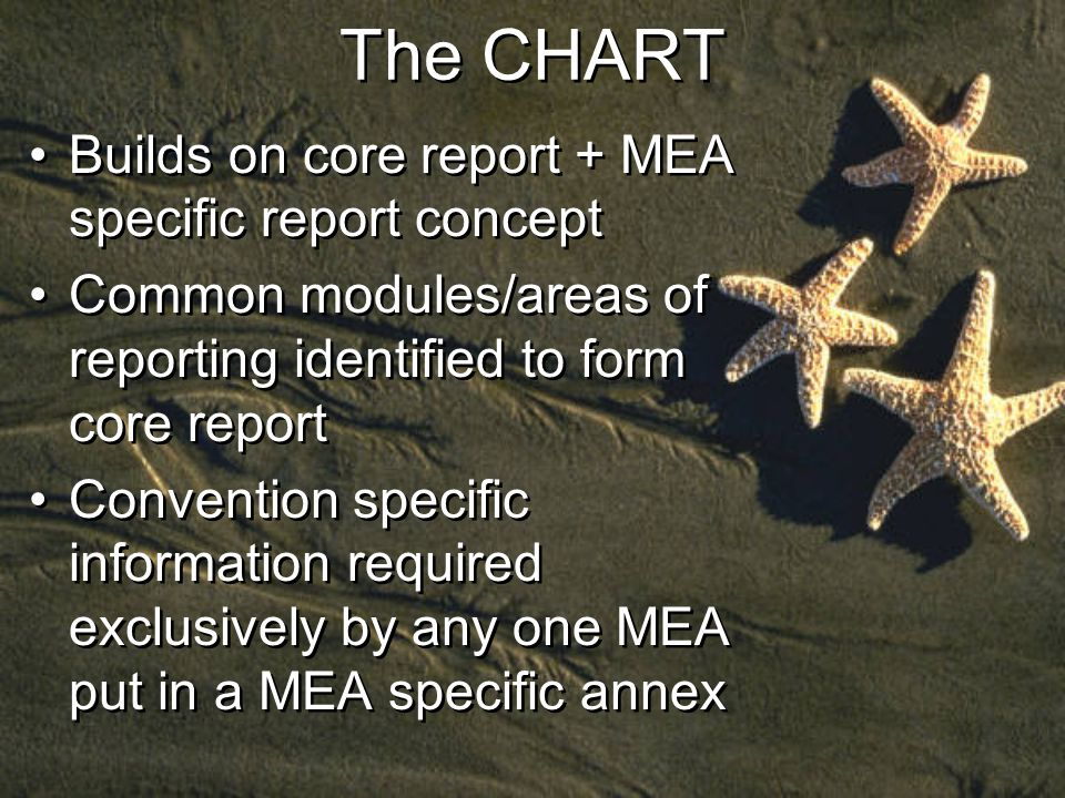 The CHART Builds on core report + MEA specific report concept Common modules/areas of reporting identified to form core report Convention specific information required exclusively by any one MEA put in a MEA specific annex Builds on core report + MEA specific report concept Common modules/areas of reporting identified to form core report Convention specific information required exclusively by any one MEA put in a MEA specific annex