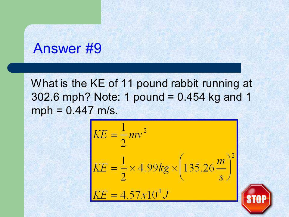 Answer #9 What is the KE of 11 pound rabbit running at 302.6 mph.