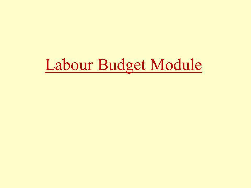 Labour Budget Module