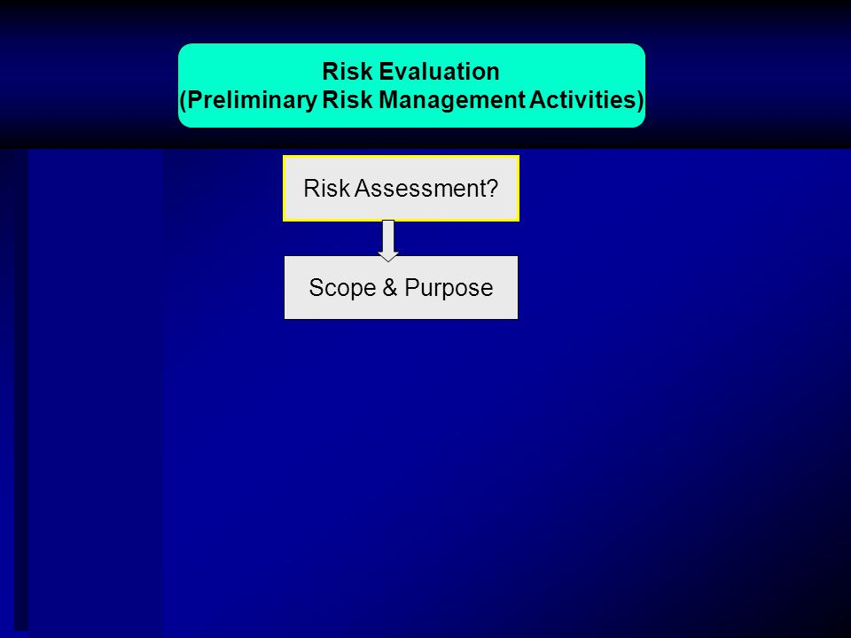 Risk Evaluation (Preliminary Risk Management Activities) Risk Assessment Scope & Purpose