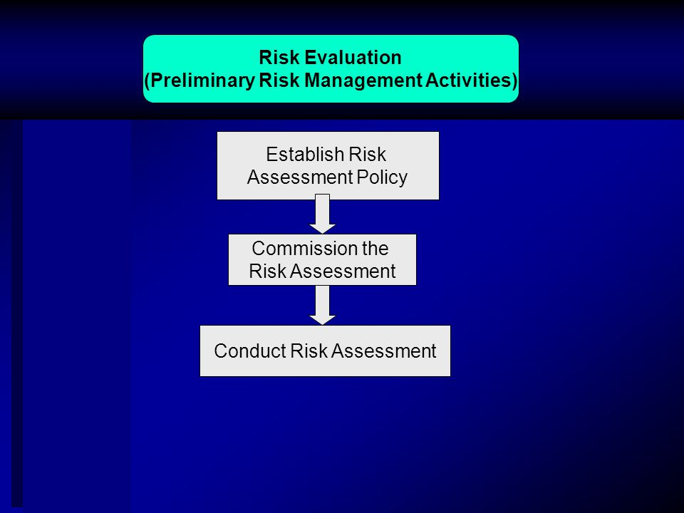 Risk Evaluation (Preliminary Risk Management Activities) Commission the Risk Assessment Establish Risk Assessment Policy Conduct Risk Assessment