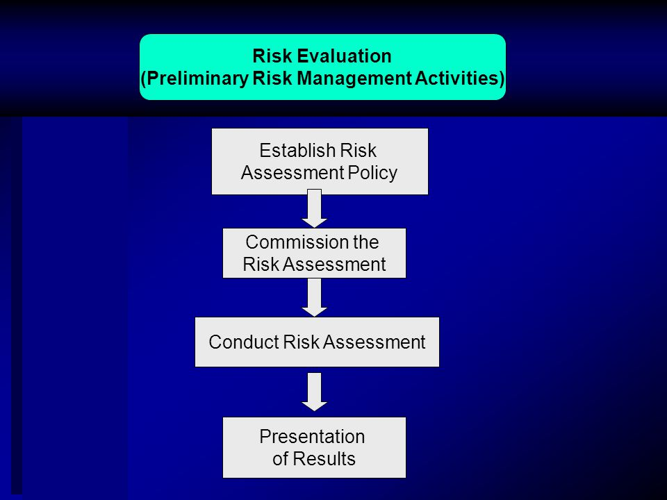 Risk Evaluation (Preliminary Risk Management Activities) Commission the Risk Assessment Establish Risk Assessment Policy Conduct Risk Assessment Presentation of Results