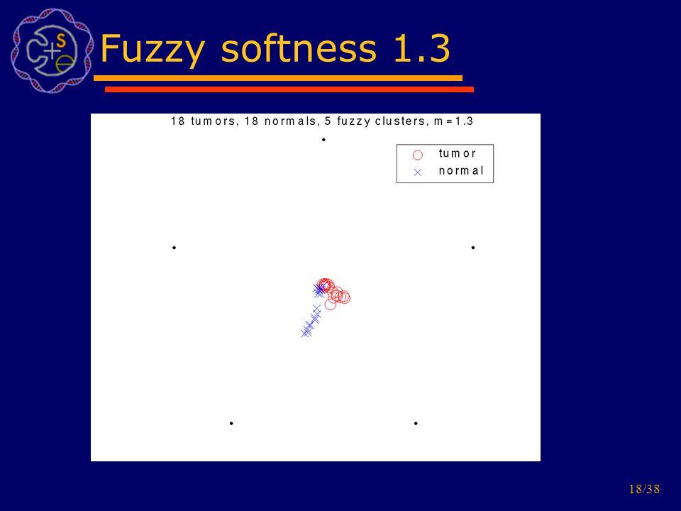 18/38 Fuzzy softness 1.3