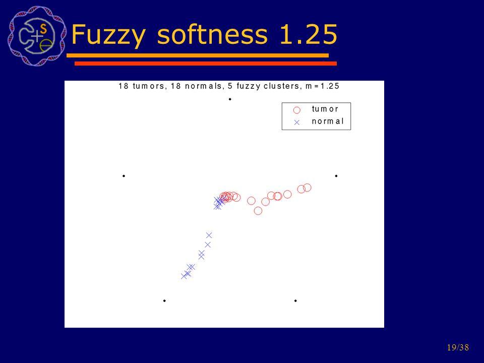 19/38 Fuzzy softness 1.25