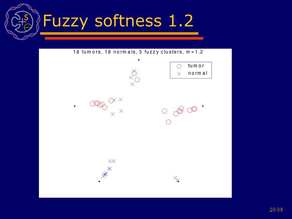20/38 Fuzzy softness 1.2
