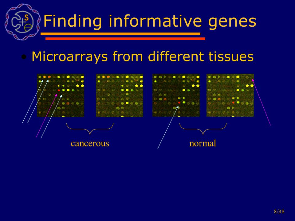 8/38 Finding informative genes Microarrays from different tissues cancerous normal