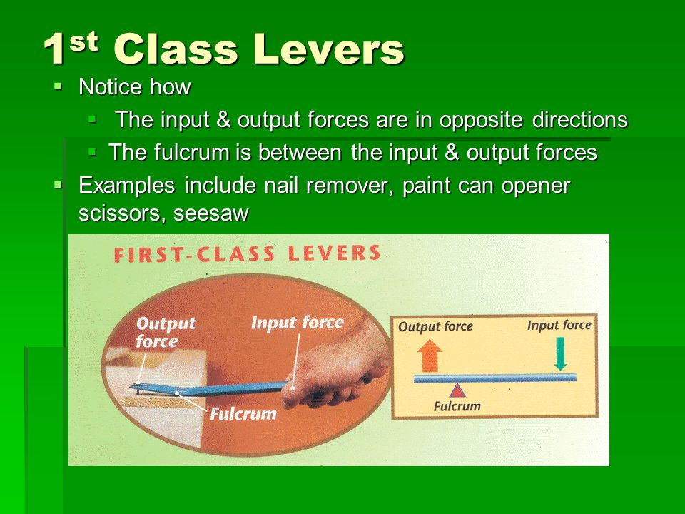 1 st Class Levers Notice how Notice how The input & output forces are in opposite directions The input & output forces are in opposite directions The