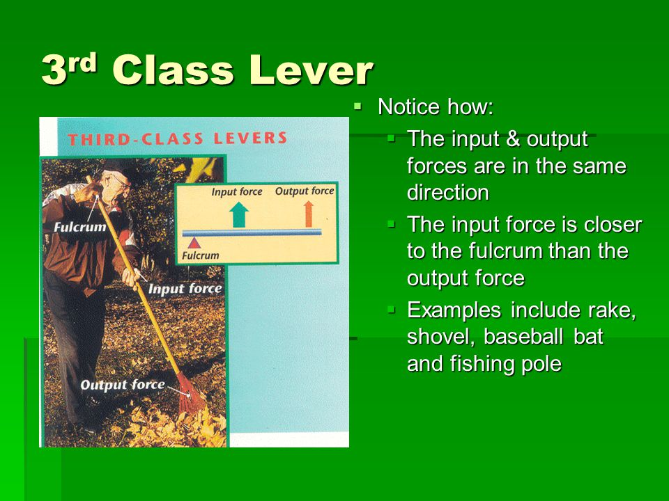 3 rd Class Lever Notice how: Notice how: The input & output forces are in the same direction The input & output forces are in the same direction The i