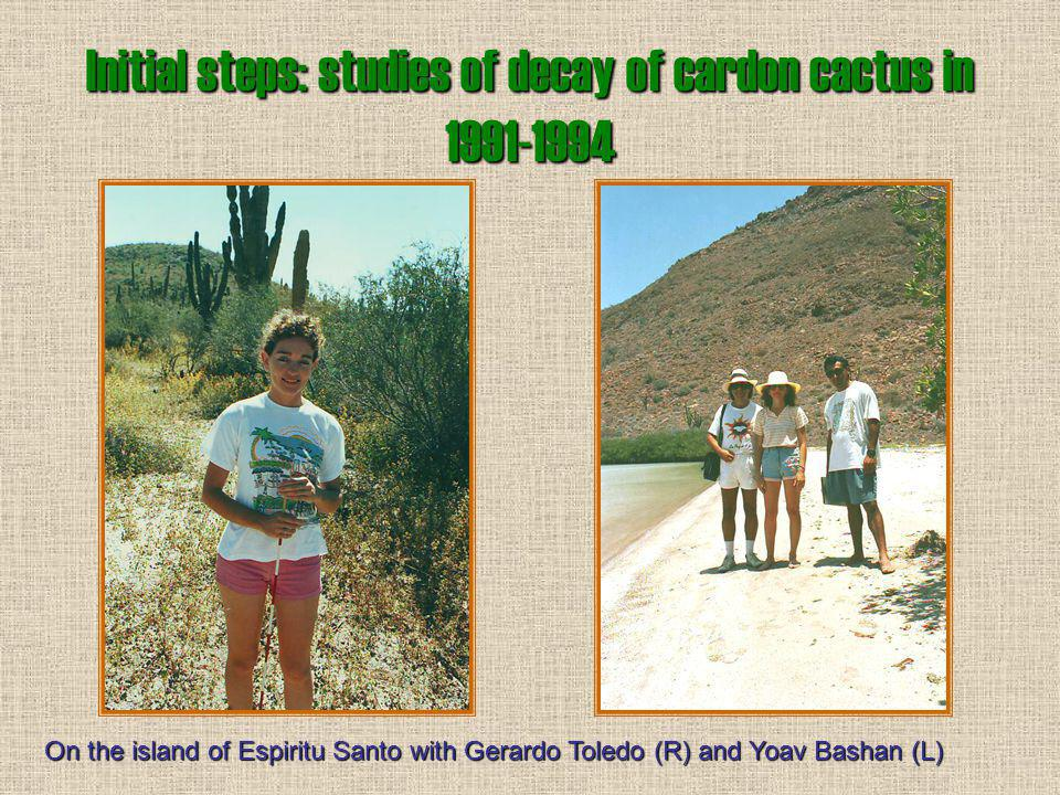 Initial steps: studies of decay of cardon cactus in 1991-1994 With Gerardo Toledo, a M.Sc. student