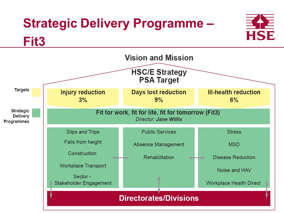 Strategic Delivery Programme – Fit3