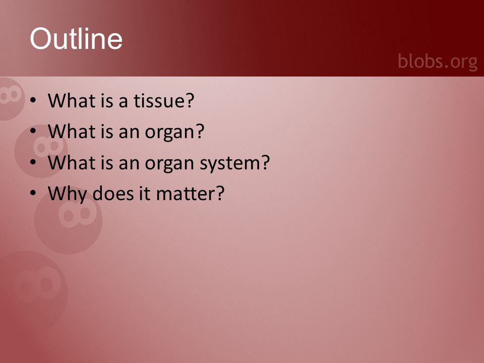What is a tissue.A collection of cells gathered for a particular function, e.g.