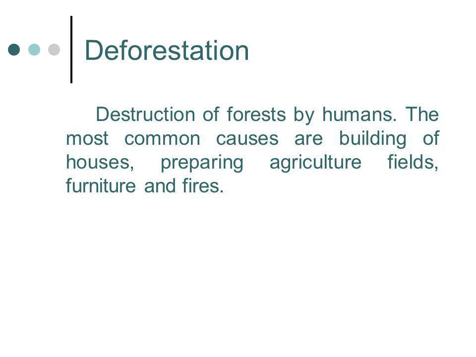 Deforestation Destruction of forests by humans.