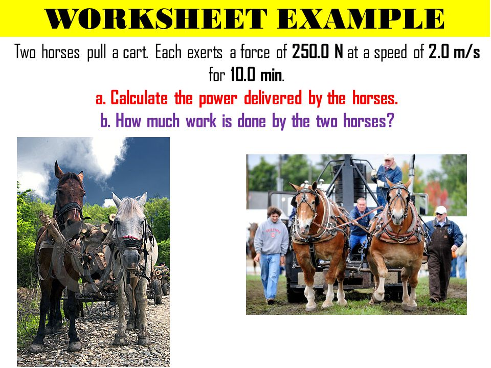 WORKSHEET EXAMPLE Two horses pull a cart. Each exerts a force of 250.0 N at a speed of 2.0 m/s for 10.0 min. a. Calculate the power delivered by the h