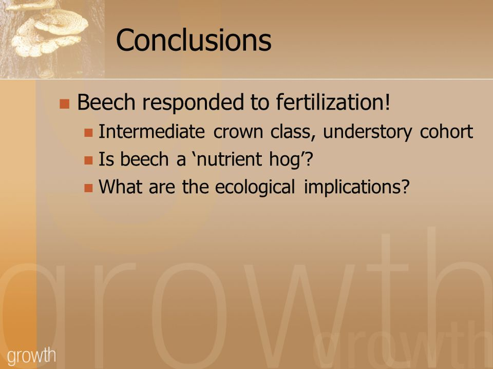 Conclusions Beech responded to fertilization! Intermediate crown class, understory cohort Is beech a nutrient hog? What are the ecological implication