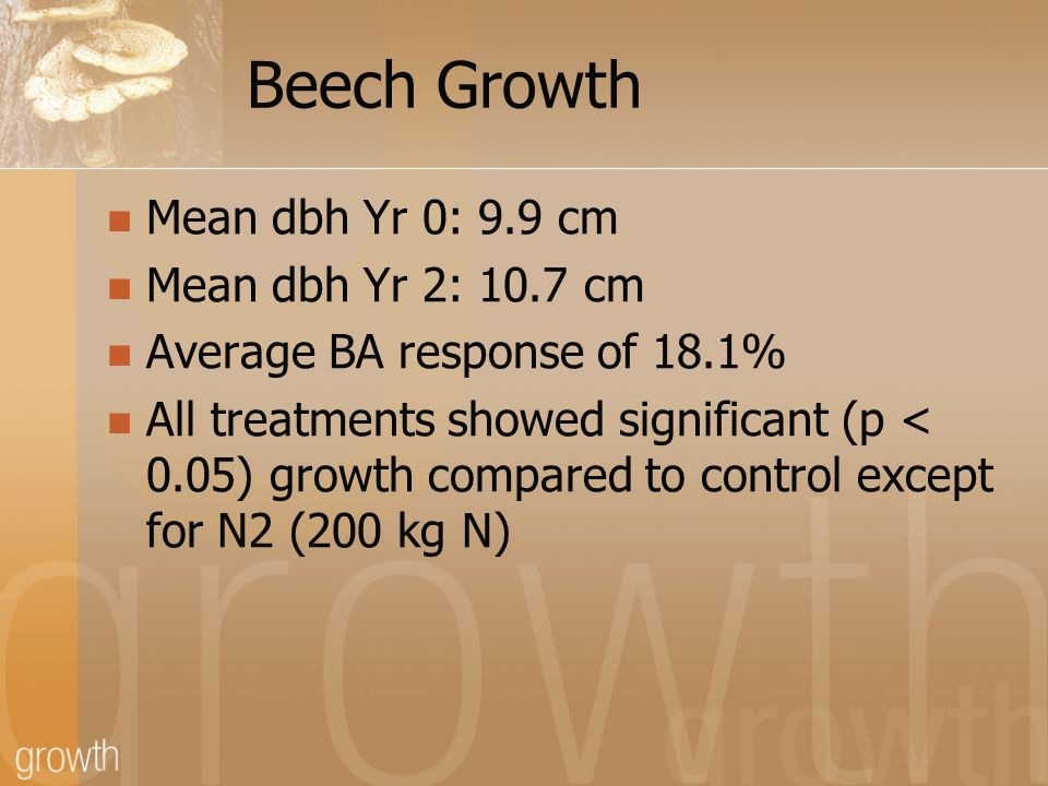 Beech Growth Mean dbh Yr 0: 9.9 cm Mean dbh Yr 2: 10.7 cm Average BA response of 18.1% All treatments showed significant (p < 0.05) growth compared to control except for N2 (200 kg N)