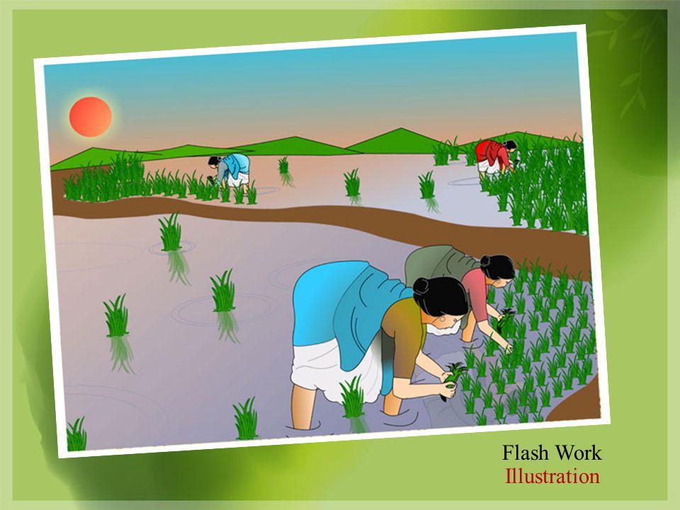 Flash Work Illustration