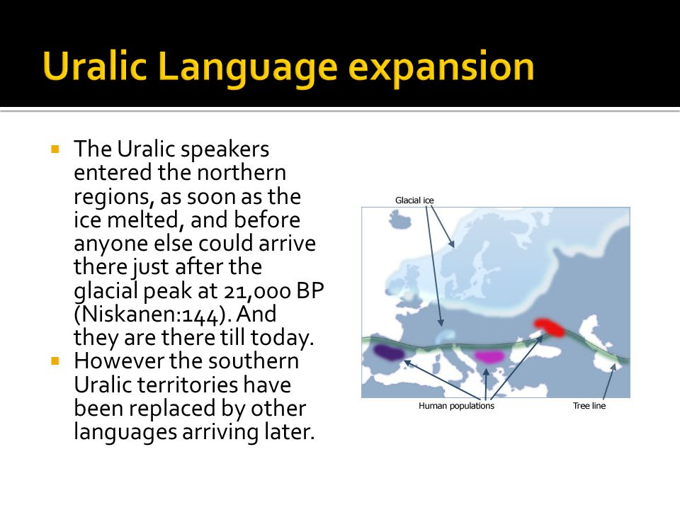 The Uralic speakers entered the northern regions, as soon as the ice melted, and before anyone else could arrive there just after the glacial peak at