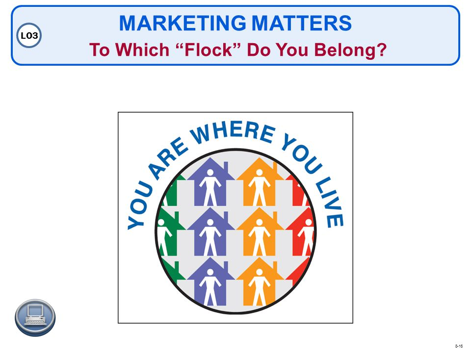 MARKETING MATTERS To Which Flock Do You Belong? LO3 8-16