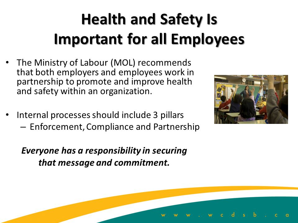 Health and Safety Is Important for all Employees The Ministry of Labour (MOL) recommends that both employers and employees work in partnership to promote and improve health and safety within an organization.