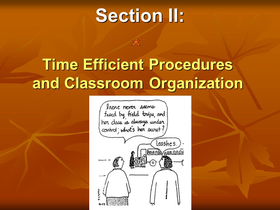 Section II: Time Efficient Procedures and Classroom Organization
