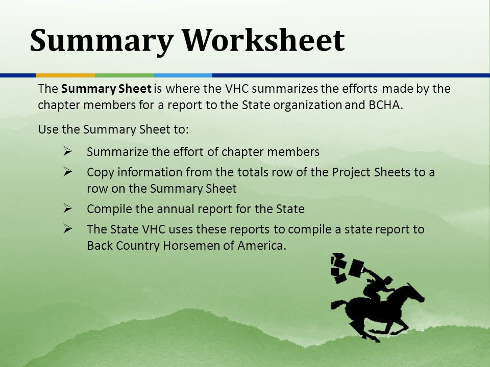 Summary Worksheet The Summary Sheet is where the VHC summarizes the efforts made by the chapter members for a report to the State organization and BCH