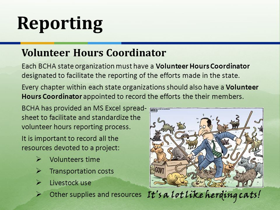 Reporting Volunteer Hours Coordinator Each BCHA state organization must have a Volunteer Hours Coordinator designated to facilitate the reporting of the efforts made in the state.