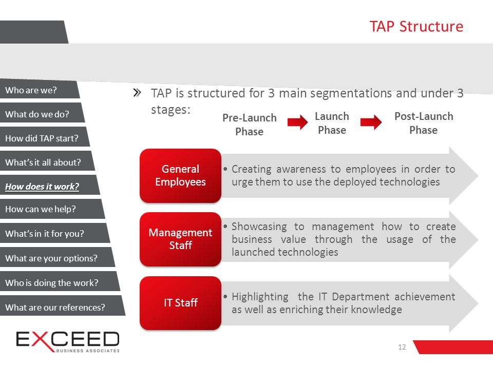 TAP Structure TAP is structured for 3 main segmentations and under 3 stages: 12 Creating awareness to employees in order to urge them to use the deployed technologies General Employees Showcasing to management how to create business value through the usage of the launched technologies Management Staff Highlighting the IT Department achievement as well as enriching their knowledge IT Staff Pre-Launch Phase Launch Phase Post-Launch Phase Who are we.