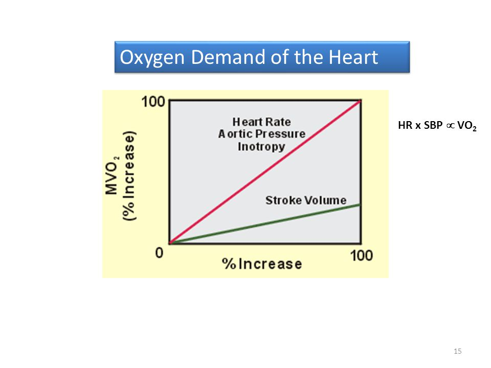 15 Oxygen Demand of the Heart HR x SBP VO 2