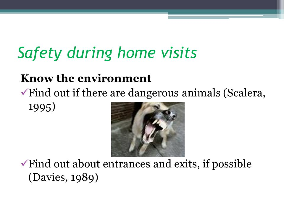 Safety during home visits Know the environment Find out if there are dangerous animals (Scalera, 1995) Find out about entrances and exits, if possible (Davies, 1989)