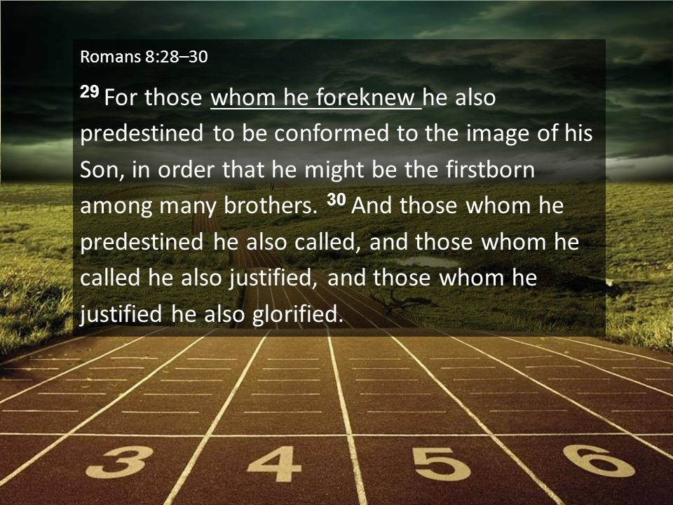 Romans 8:28–30 29 For those whom he foreknew he also predestined to be conformed to the image of his Son, in order that he might be the firstborn amon