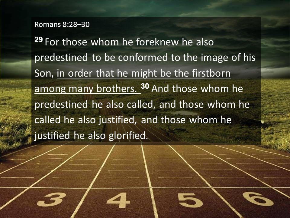 Romans 8:28–30 29 For those whom he foreknew he also predestined to be conformed to the image of his Son, in order that he might be the firstborn among many brothers.