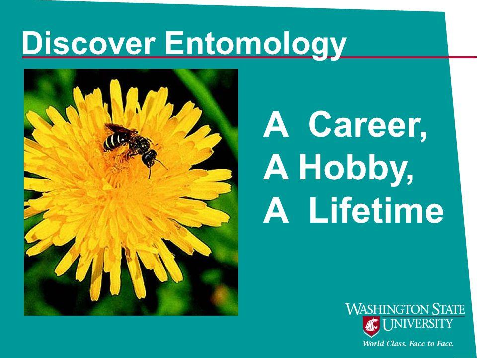 Discover Entomology A Career, A Hobby, A Lifetime