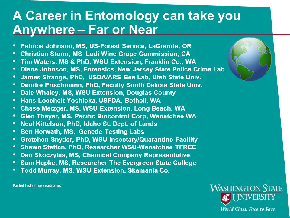 A Career in Entomology can take you Anywhere – Far or Near Patricia Johnson, MS, US-Forest Service, LaGrande, OR Christian Storm, MS Lodi Wine Grape Commission, CA Tim Waters, MS & PhD, WSU Extension, Franklin Co., WA Diana Johnson, MS, Forensics, New Jersey State Police Crime Lab.