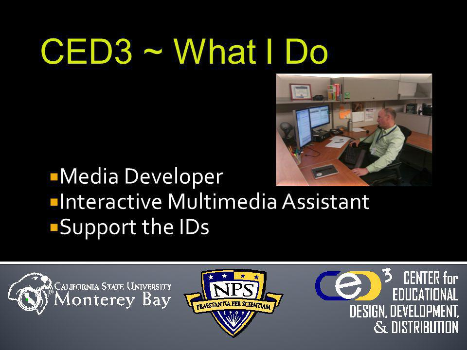 Media Developer Interactive Multimedia Assistant Support the IDs CED3 ~ What I Do