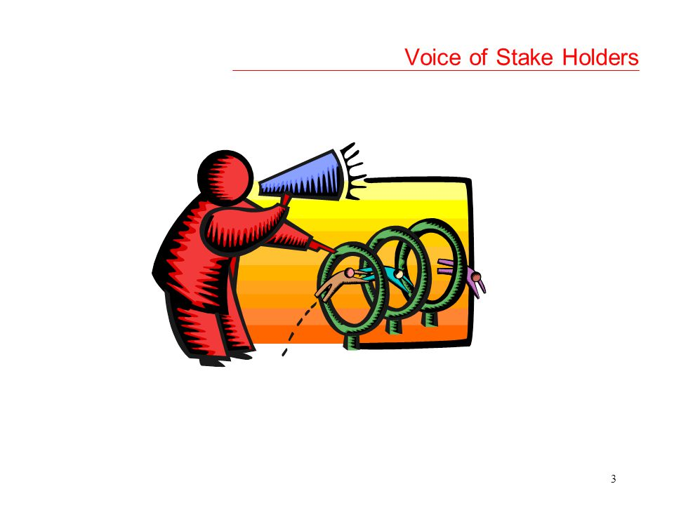 3 Voice of Stake Holders