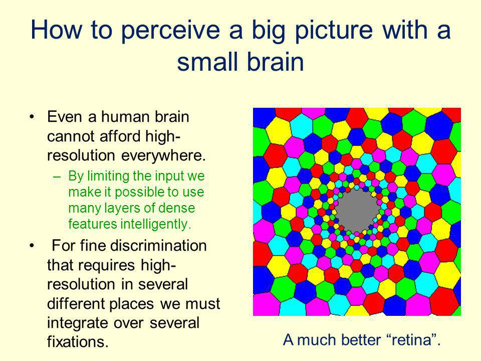 How to perceive a big picture with a small brain Even a human brain cannot afford high- resolution everywhere. –By limiting the input we make it possi