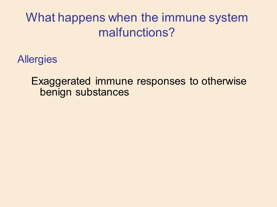 Allergies Exaggerated immune responses to otherwise benign substances What happens when the immune system malfunctions?