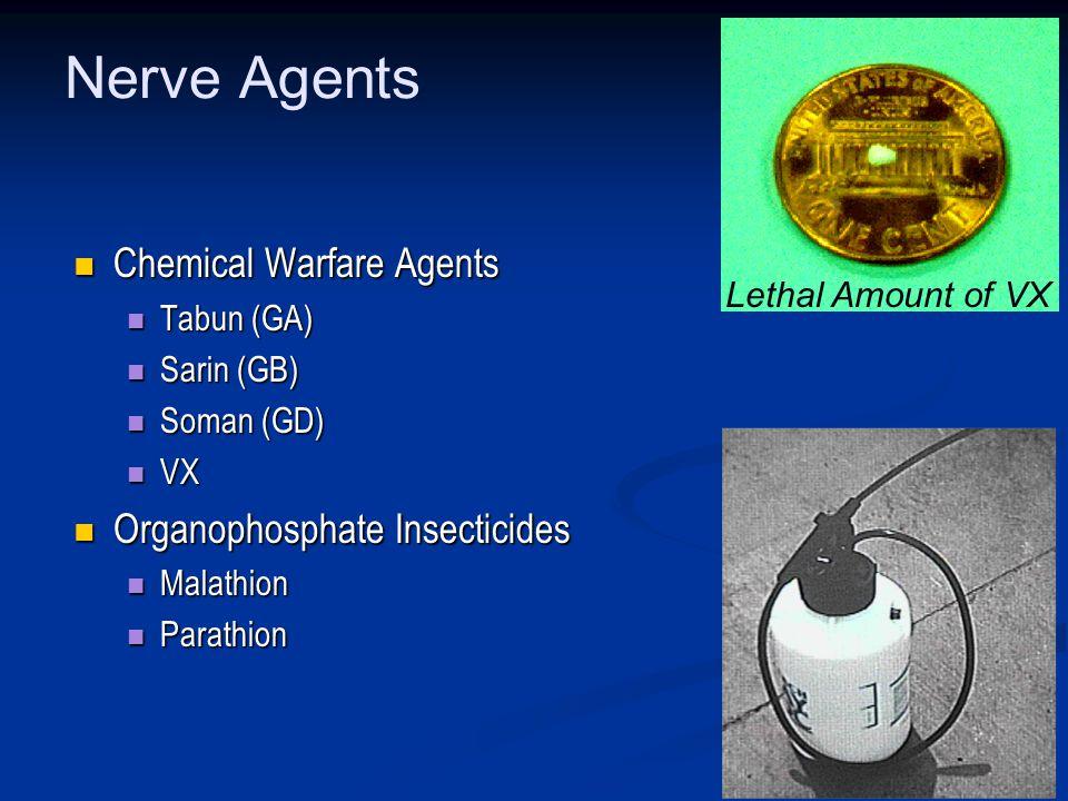 Nerve Agents Chemical Warfare Agents Chemical Warfare Agents Tabun (GA) Tabun (GA) Sarin (GB) Sarin (GB) Soman (GD) Soman (GD) VX VX Organophosphate Insecticides Organophosphate Insecticides Malathion Malathion Parathion Parathion Lethal Amount of VX