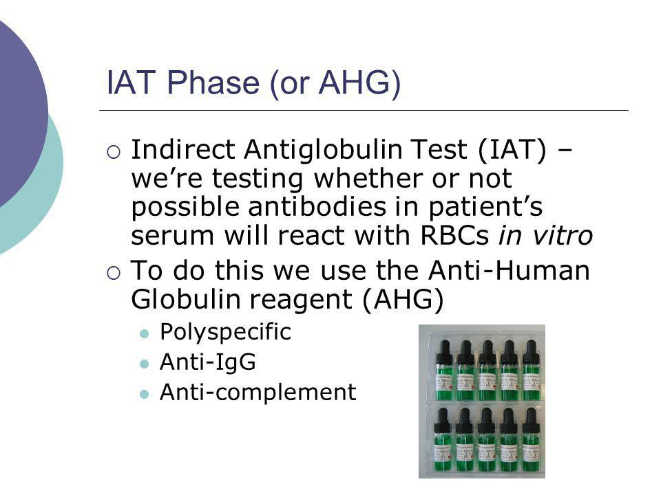 IAT Phase (or AHG) Indirect Antiglobulin Test (IAT) – were testing whether or not possible antibodies in patients serum will react with RBCs in vitro