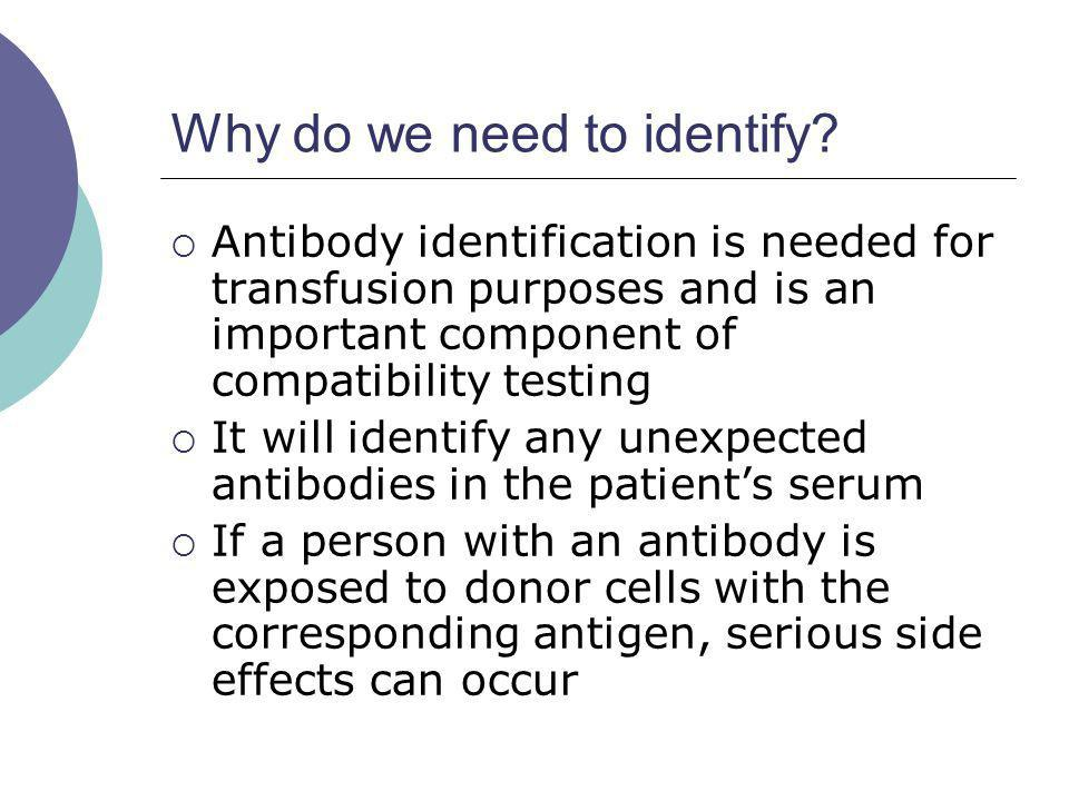 Why do we need to identify? Antibody identification is needed for transfusion purposes and is an important component of compatibility testing It will