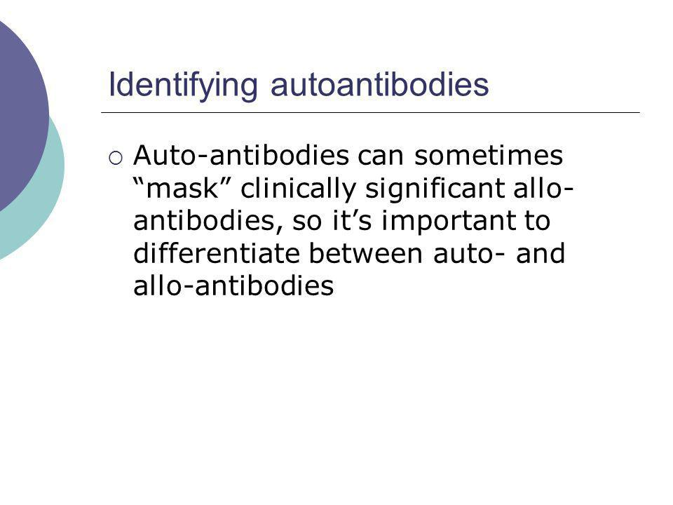 Identifying autoantibodies Auto-antibodies can sometimes mask clinically significant allo- antibodies, so its important to differentiate between auto-