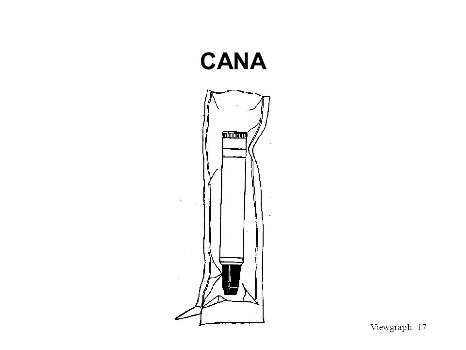 Viewgraph 17 CANA