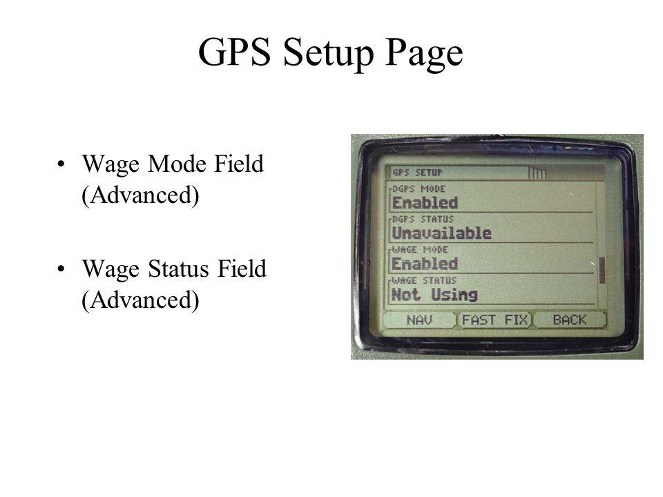 Wage Mode Field (Advanced) Wage Status Field (Advanced) GPS Setup Page